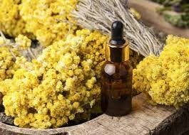 Immortelle Extract Market : Leading Players Analysis Report 2024 — Teletype