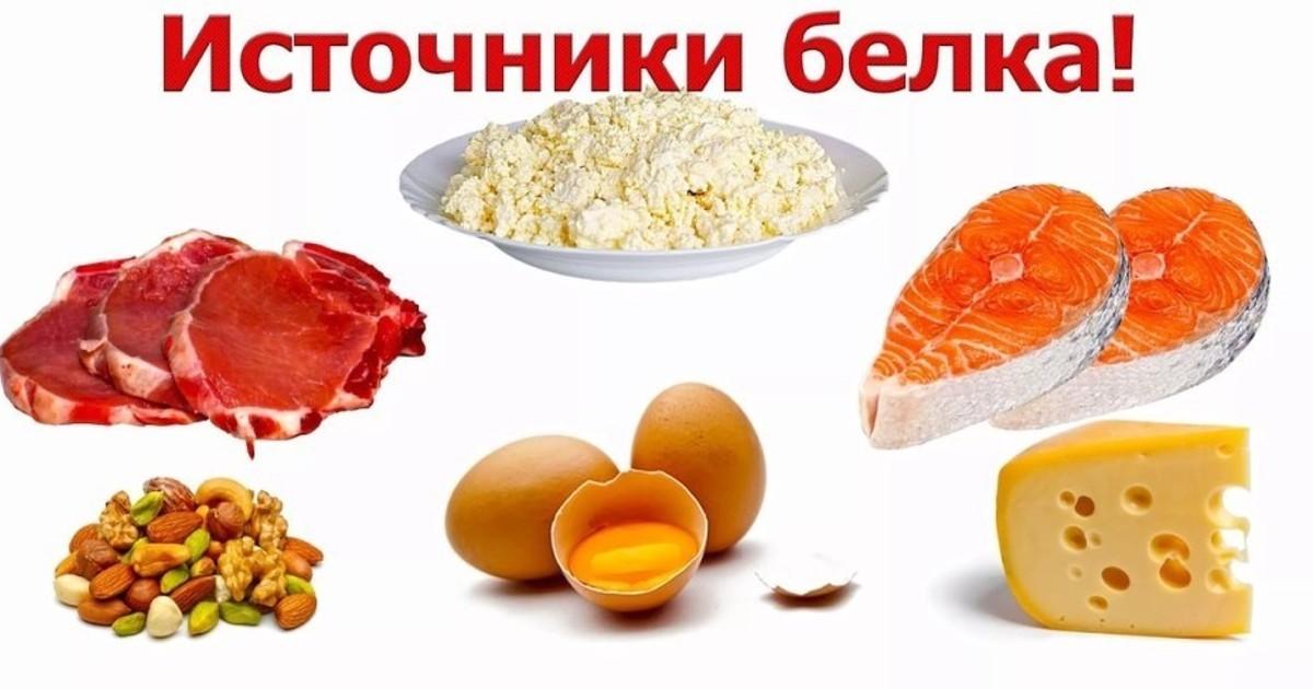 картинки продуктов содержащие белок подробностей том что