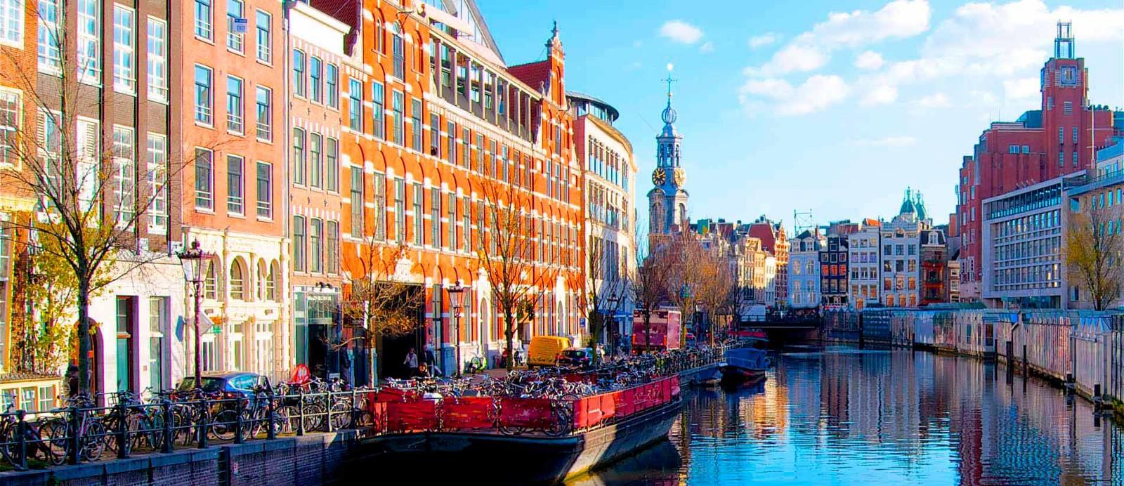 Высшее образование в Нидерландах — Teletype