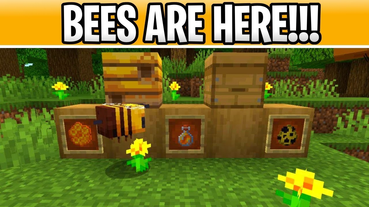 How To Download Minecraft 1 15 Buzzy Bees On Pc For Free